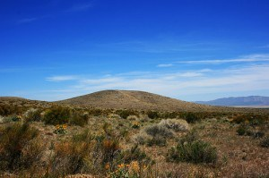 Mountain Desert Lanscape