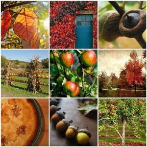 Autumn Mosaic From great Flickr Finds