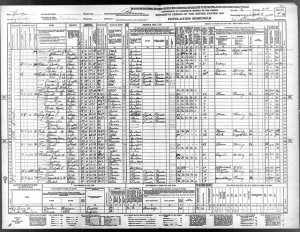 1940 Census Nevada Franklin Don