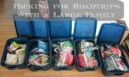 Packing for Road Trips With a Large Family
