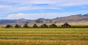 Baling with 7 balers 10