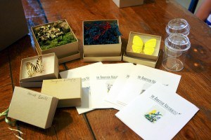 amateur naturalist kit 01