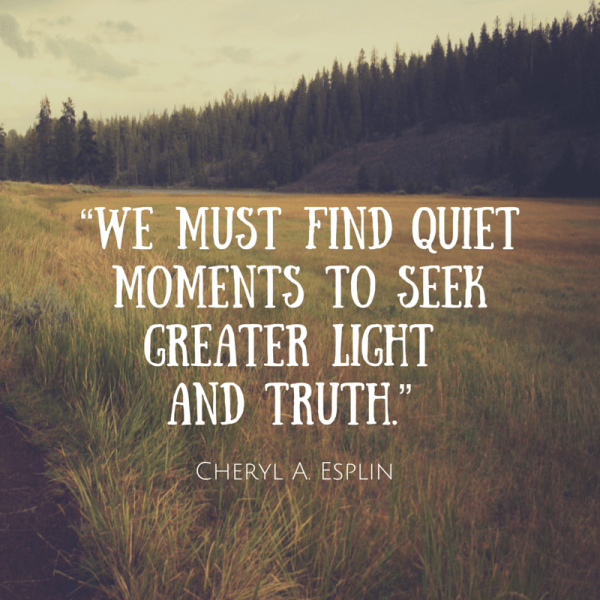 We must find quiet moments to seek greater light and truth. Cheryl A Esplin
