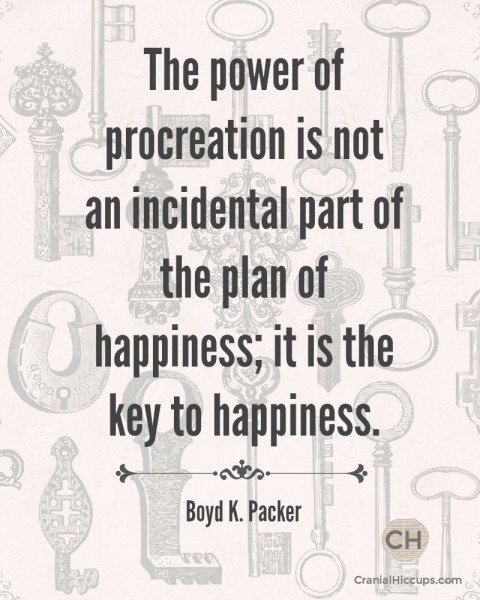 The power of procreation is not an incidental part of the plan of happiness; it is the key to happiness. Boyd K. Packer