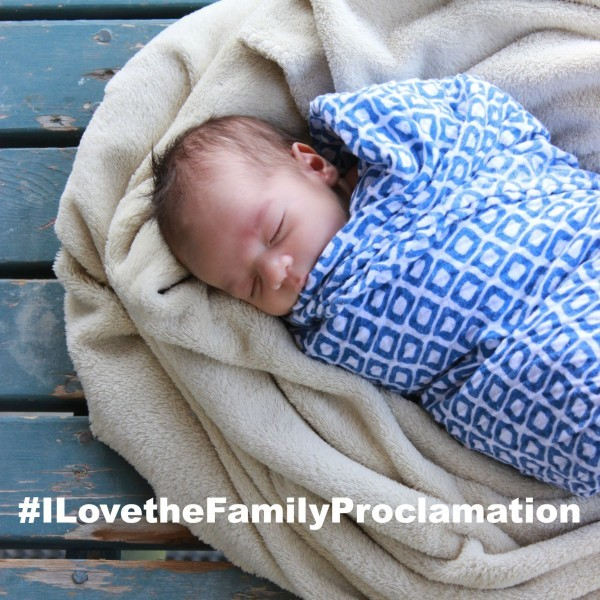 Use the hashtag #ILovetheFamilyProclamation to share what you love about it! on all your social media channels!