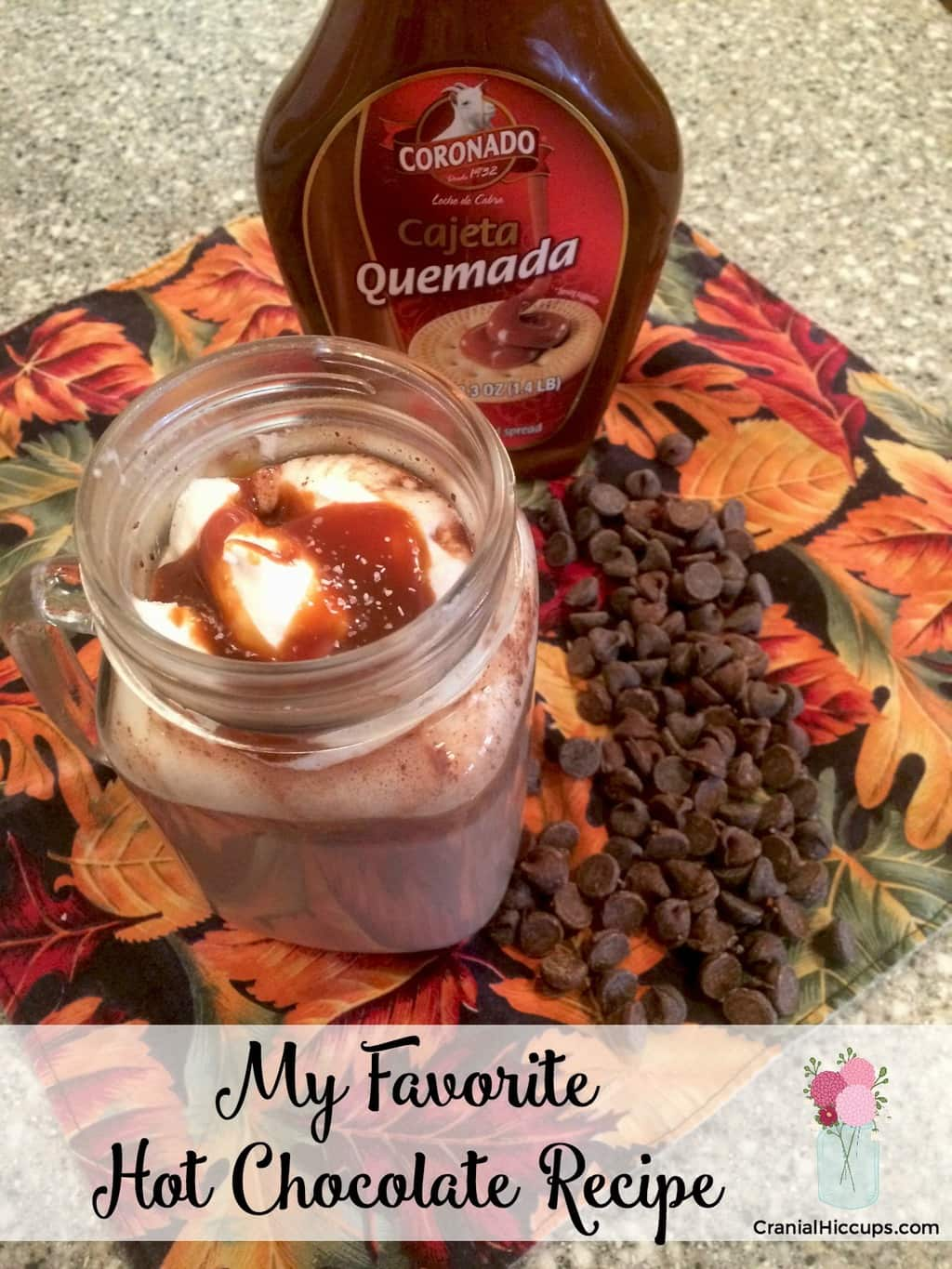 My Favorite Hot Chocolate Recipe – Cranial Hiccups