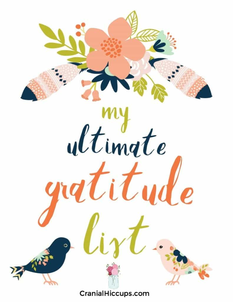 The ultimate gratitude list will help you write down over 1,000 blessings! With pages of prompts you create your own lists of the blessings God has bestowed upon you. Truly a thanksgiving treat!