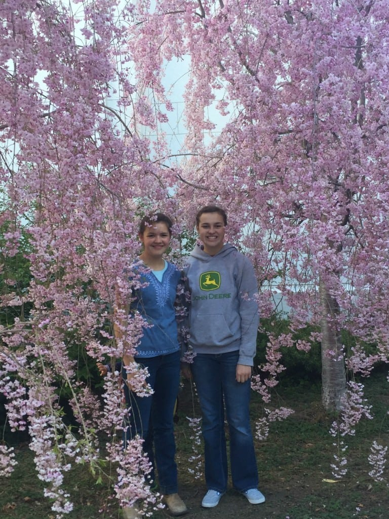 Deb and Abby by blossoming trees