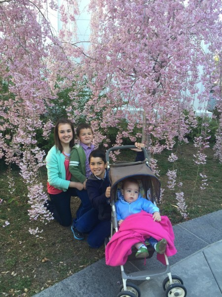 Kids by blossoming trees