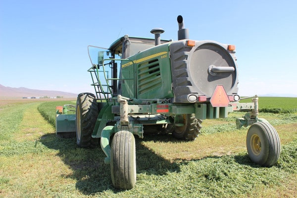 Swather reay to cut