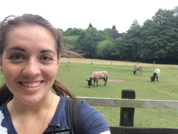 7_25_2016 Marie visiting the donkeys