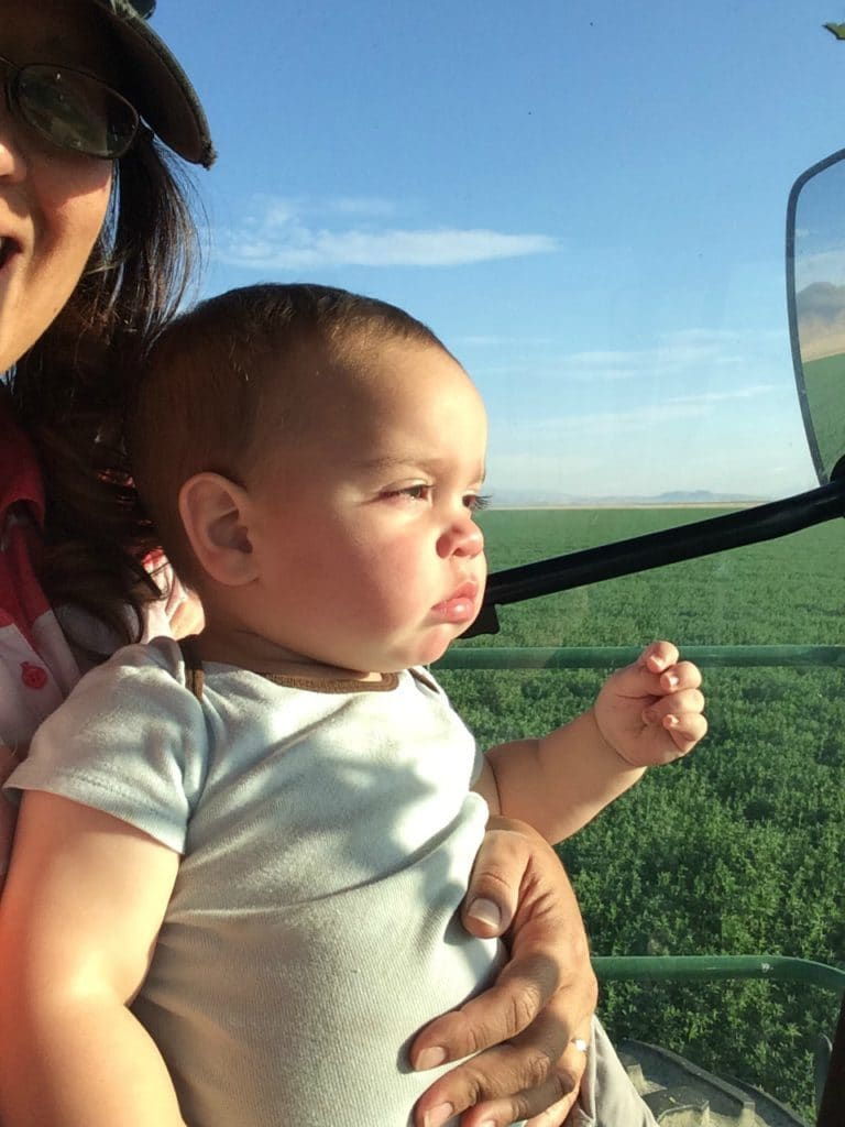 riding in the swather